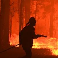Tovább tombolnak az ausztrál erdőtüzek