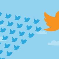 Balos nők uralják a Twittert
