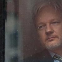 Kezd Ecuador belefáradni Julian Assange ügyébe