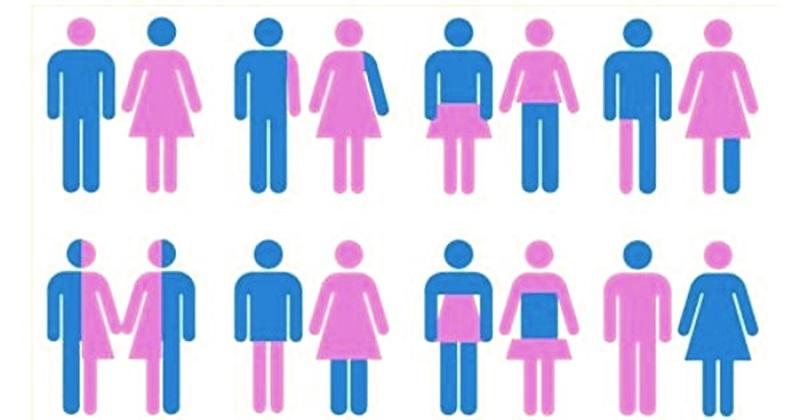 gender2.jpg