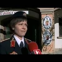 Darazsak átrágták a falat. (TV2 felvétele)