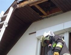 Darázsfészek eltávolítása tűzoltóság
