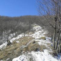 2015-02-14 – Mátrafüred-Sástó Oxygen Adrenalin Park - Kiss Péter emléktúra