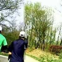 DaRun futók a VII. Depónia Tóparti-Futópartin