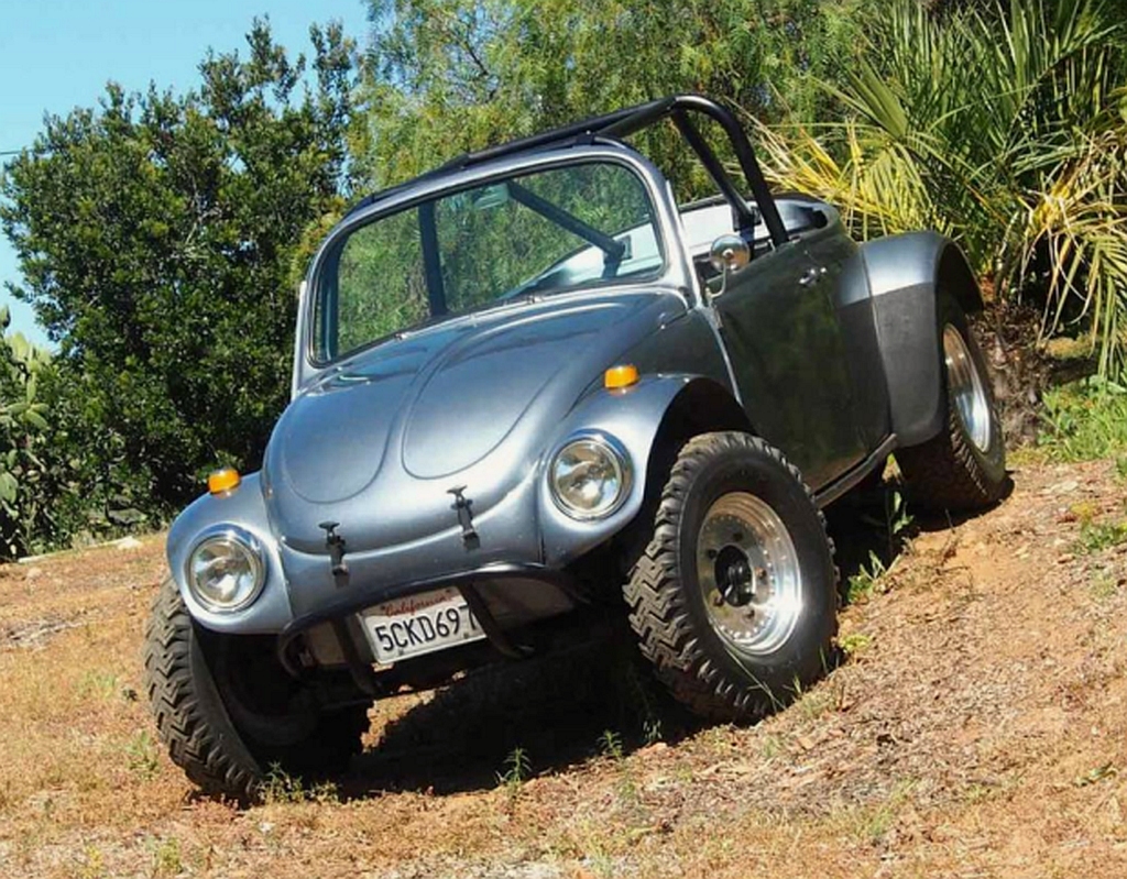 1968_bug_m.png