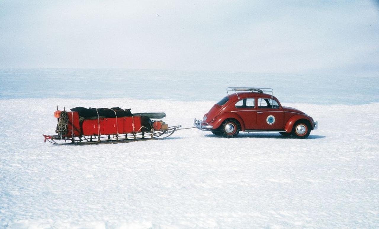 antarctic-ok