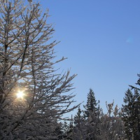 Mit csinálnak a napelemek télen? #napelem