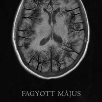 FAGYOTT MÁJUS
