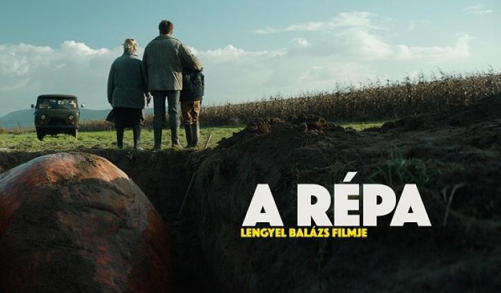 large_repa1.jpg