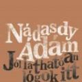 Nádasdy Ádám nyerte a 2020. évi Aegon Irodalmi Díjat
