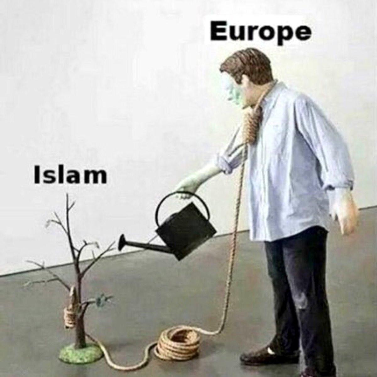 europe_and_islam.jpg