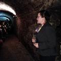 Palkóék, akik finom borokkal kényeztettek a Borklubban