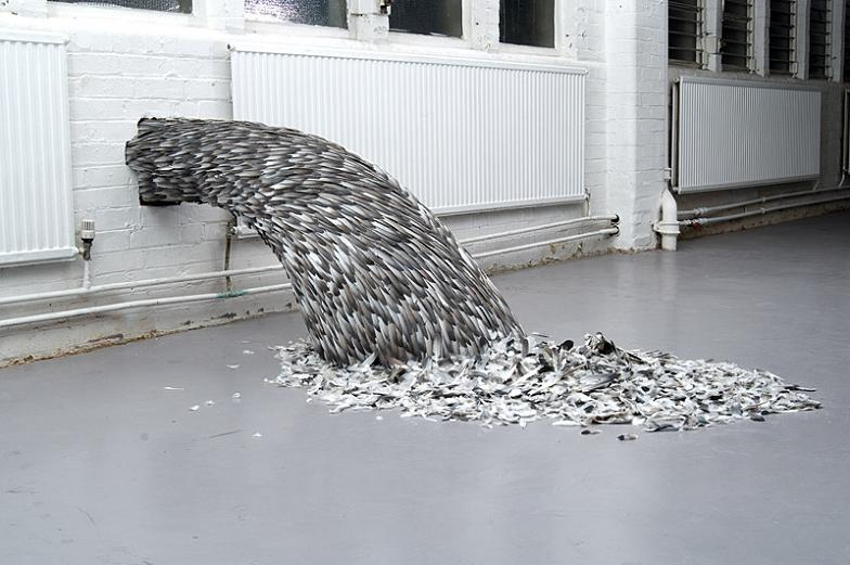 bird-feathers-rushing-out-of-pipe-in-wall.jpg