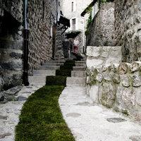 Hová vezet a zöld szőnyeg?