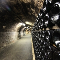 Múzeumok éjszakája 2013: Törley pezsgőpincészet - Nyerj egy üveggel!