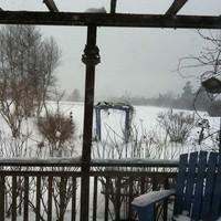 Téli kertek