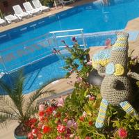 Dekoody utazásai - Naposparti nyár