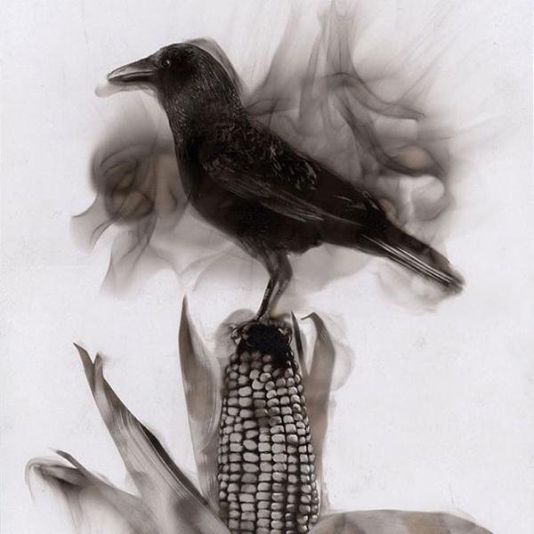 fire-paintings-soot-art-steve-spazuk-41.jpg