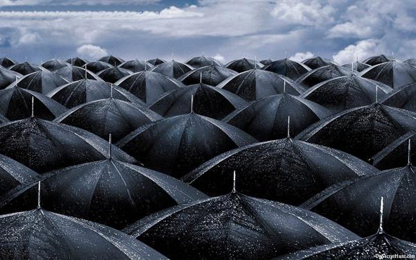 Monsoon-Wallpapers.jpg