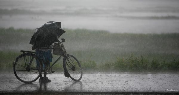 monsoon-0v.jpg