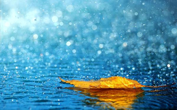 monsoon-wallpaper-6919-7314-hd-wallpapers.jpg
