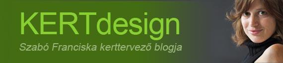bloglapozo szf.jpg