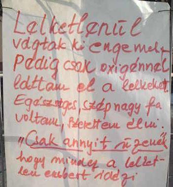 ormezo papir_1.jpg