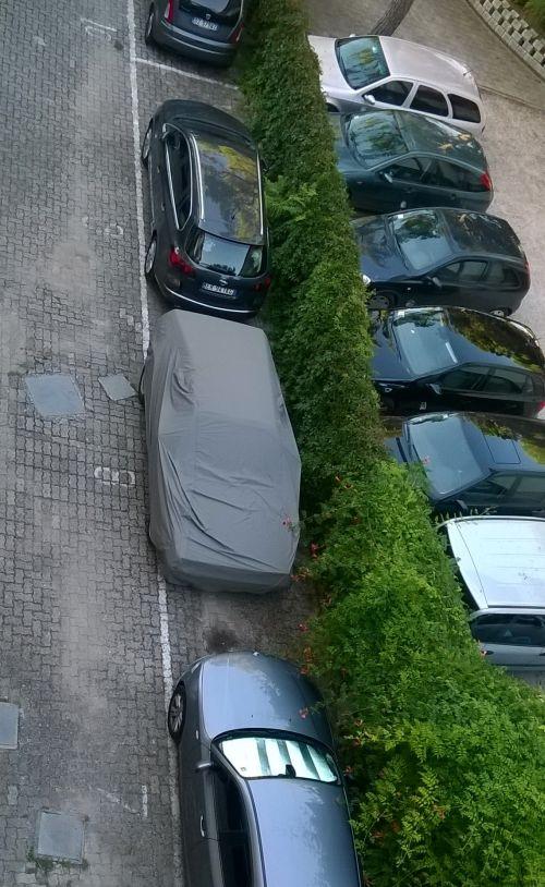 parkoloban.jpg