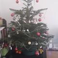 karácsonyi lidércnyomás