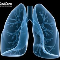 Meglepő felfedezés: a tüdő vérképző szerv
