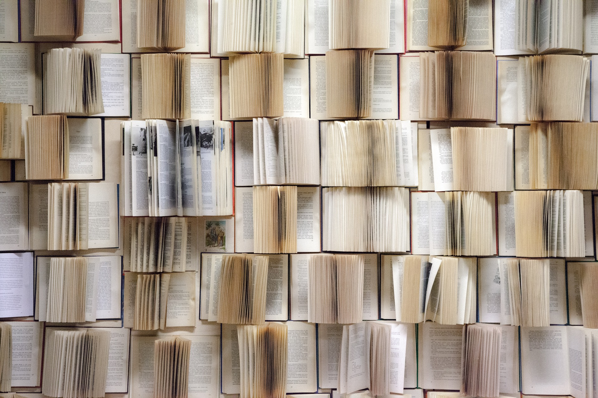 book-wall-1151405_1920.jpg