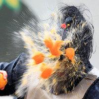 Narancs csata Olaszországban