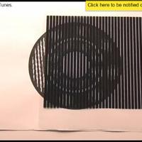 Káprázatos optikai illúziók