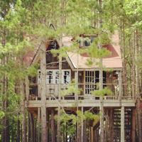 Otthonom, a fára nőtt faház