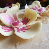 Újabb búcsútorta készült... Díszítésnek fehércsoki virág rózsaszín selyemporral megfestve #chocolate #cake #cakedecor