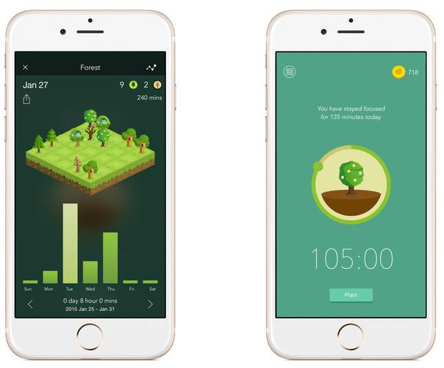 forest-app_1.jpg