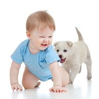 Szelid és hatásos gyógymód 3 percben - nem csak babáknak és kismamáknak!