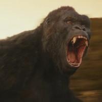 A Kong: Koponya-sziget is kapott egy magyar szinkronos előzetest