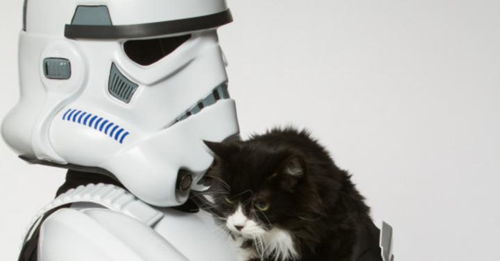 A Star Wars gonosztevői kisállatokkal pózolnak a jó ügy érdekében