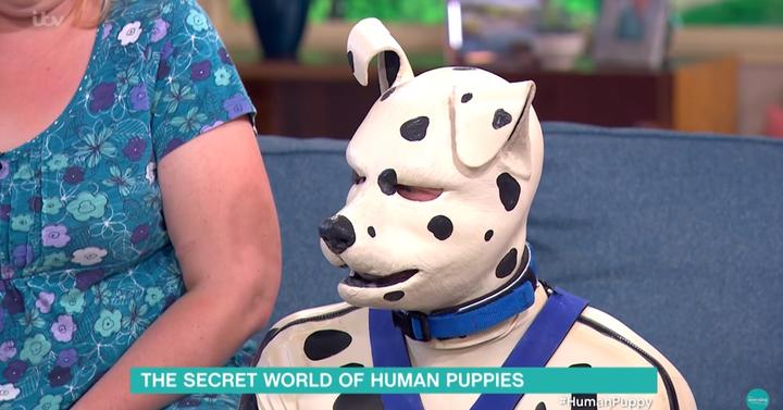Ez a férfi kutyául érzi magát