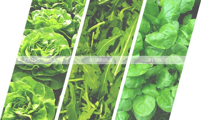 zöldség aprilis