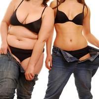 Az elhízás fő oka
