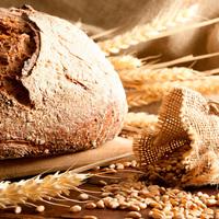 Fehér kenyér vagy teljes kiőrlésű kenyér?