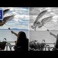 Photoshop tippek (#46.) - Hogyan lehet kifejezőbb a fényképünk? (#tutorial)
