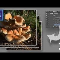 Photoshop tippek (#70.) - Actionök titkai II. (#tutorial)