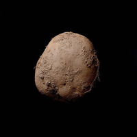 Milliókért kelt el a krumplifotó