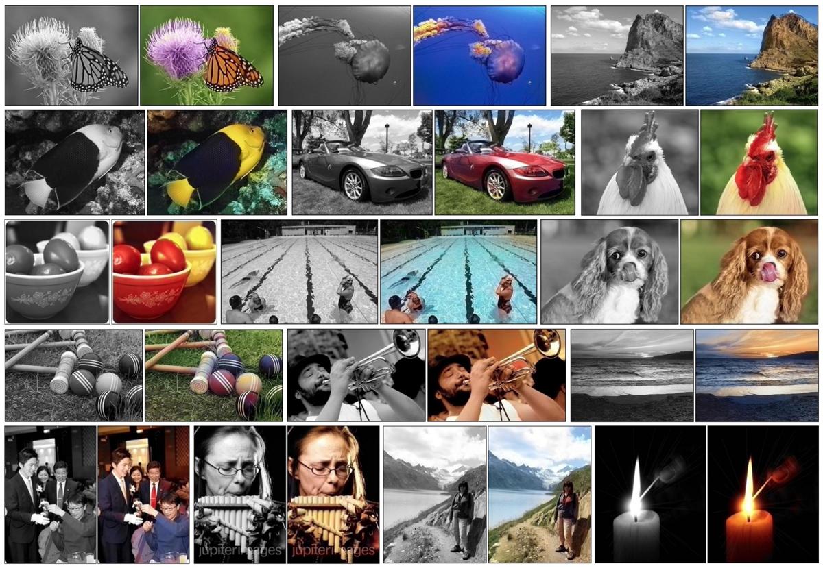 bw_colorization-software.jpg
