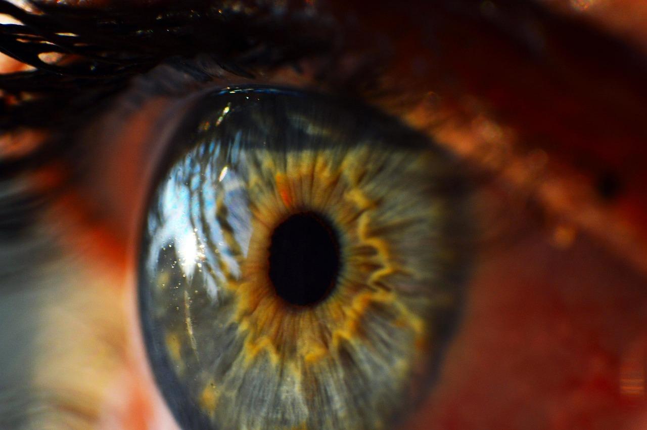 human_eye.jpg