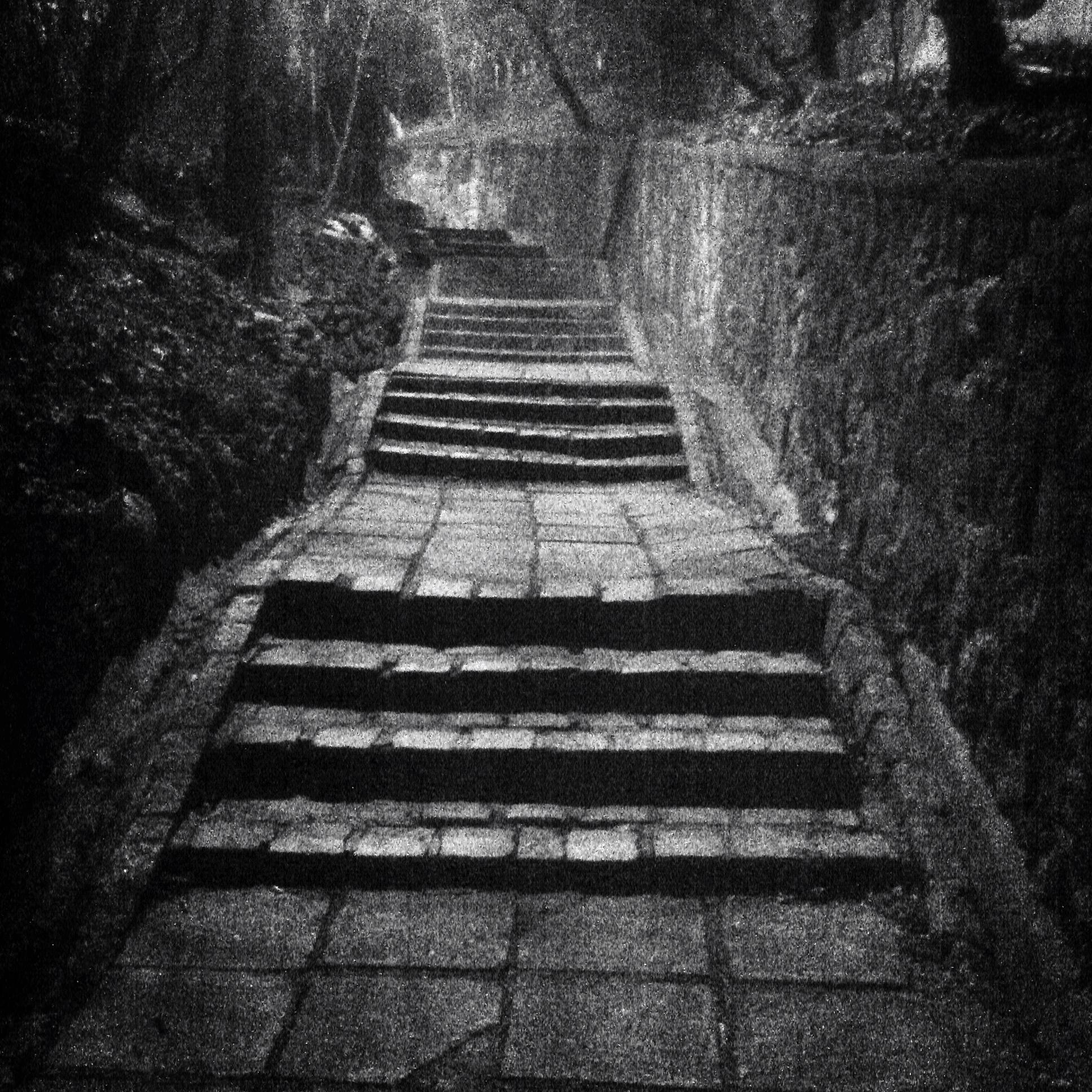 TD_140116_002_stairs.JPG