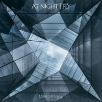 At Night I Fly: Mirror Maze (2019)